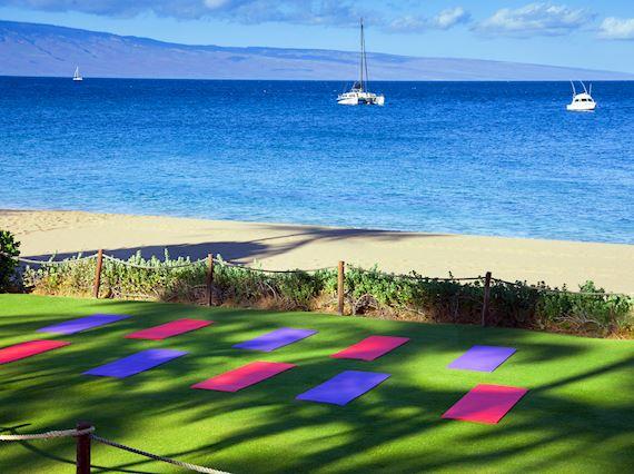 Beach Lawn Yoga